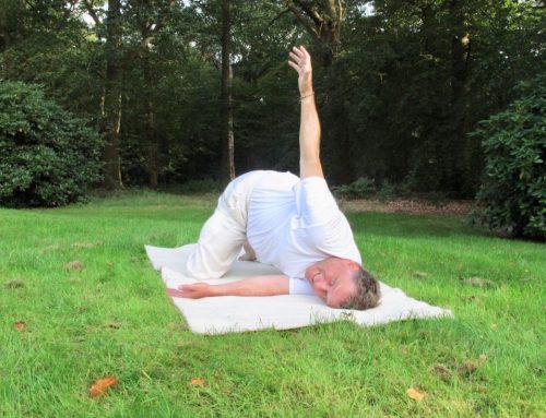 Yin yoga en het eerste chakra