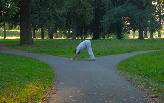 yoga psychologie, twee paden