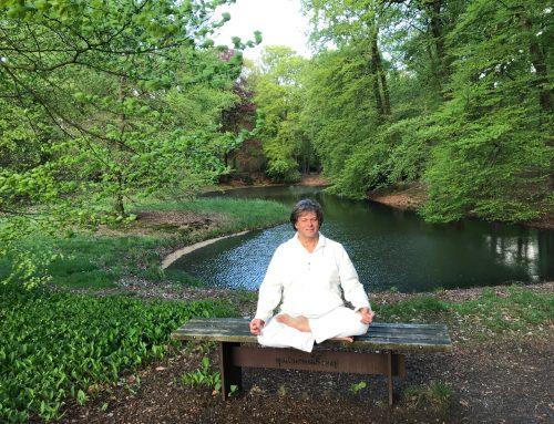 meditatie en yoga een dubbele ontspanning