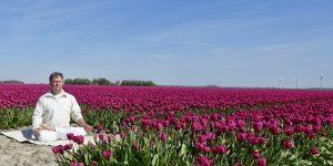 mediteren bij de tulpen.