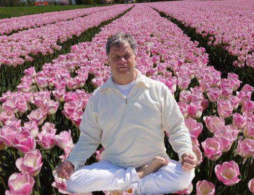 Chakra yoga Deventer. Wat is een chakra?