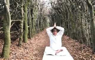 hart chakra yoga