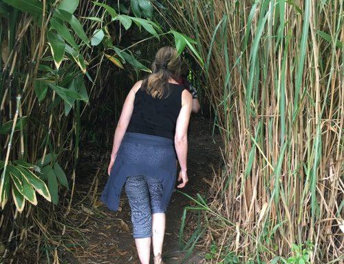 Yoga wandelen, bewegen en inzicht ontvangen
