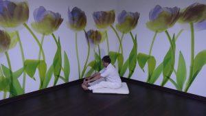 yoga, welke yogavorm past bij jou?