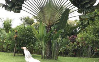 yoga grenzen