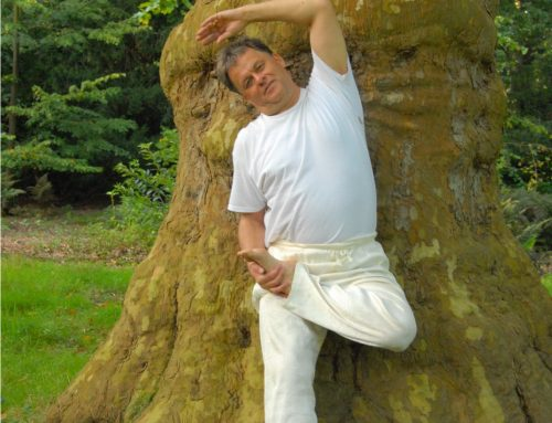 Zomer yoga Twello