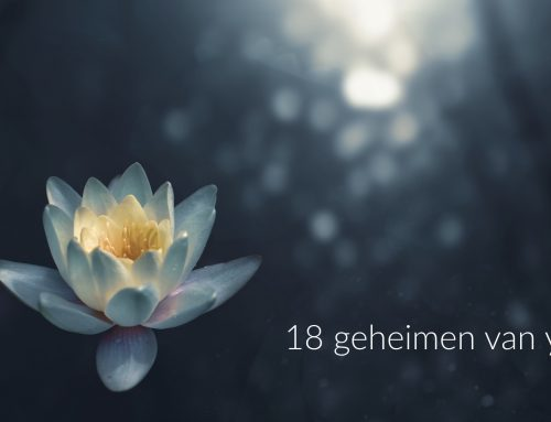 18 geheimen van yoga, ebook