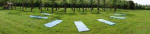 yoga lesrooster in de zomermaanden