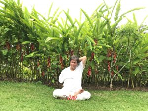 wellness yoga India